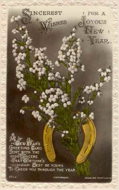 Heather. The plant stands for many things in celtic tradition. White heather is thought to bring luck and protection to both the giver and the receiver.