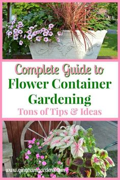 Free Shipping Garden Vignette Digital Photo Picture Image