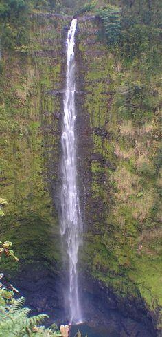 Akaka Falls. North of Hilo, Hawaii