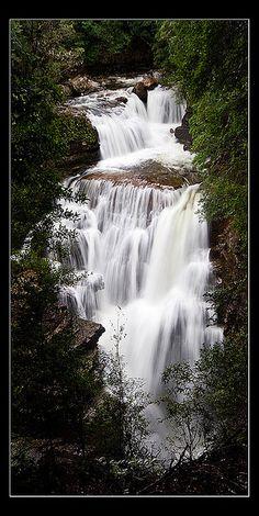 D'alton Falls in Cradle Mountain-Lake St Clair National Park, Tasmania_ South Australia