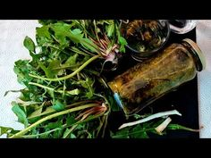 Rădăcină de Păpădie.Acționează mai bine decât HIMOTERAPIE. Ajuta la Renichi.Ficat.Si boli de piele - YouTube For Your Health, Seaweed Salad, Mai, Ethnic Recipes, Youtube, Food, Plant, Essen, Meals