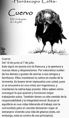 Cuervo (10 jun - 7 jul)