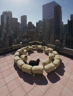 François-Xavier Lalanne and His Parade of Woolly Sheep - Corniche Watches World Press, Pure Fun, Bronze Patina, Black Oil, International Artist, Press Photo, Life Magazine, French Artists, Photojournalism