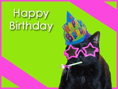 Happy Birthday Black Cat You're one Cool Glasses Star Hat Pink Green Party Blower Favor Funny Kittycat Cats photo GFTBlackCat.gif
