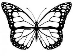 butterfly clipart black and white - Google Search