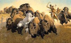 Frank McCarthy In Pursuit of the White Buffalo Native American Print, Native American Warrior, Native American Artwork, Native American Artists, American Indian Art, Native American Indians, Plains Indians, American Bison, Dakota Do Norte