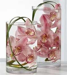 Floating Cymbidium Orchids