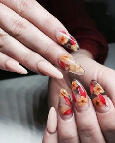 The Dried Flower Nail Art Designs can be created on fingernails of any appearance and width, and can be adapted to any blush combination and any textural flower pattern. Dried Flower Nail Art Designs is the best acceptable, because flowers are the s Fabulous Nails, Gorgeous Nails, Pretty Nails, Perfect Nails, Super Cute Nails, Nail Art Designs, Orange Nail Designs, Nail Design Glitter, Nails Design