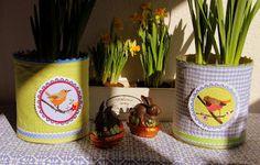 Blumentöpfe aus Konserven