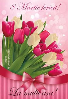 Colorful Flowers, Spring Flowers, Beautiful Flowers, White Tulips, Pink Tulips, My Flower, Flower Art, Flowers Background, Mothers Day Images
