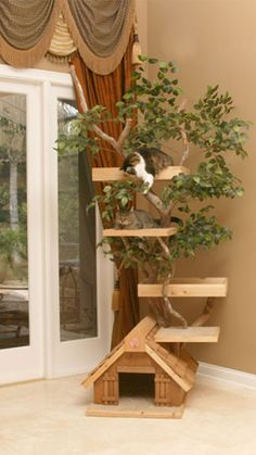 Cool Cat Tree Houses With Real Trees By Pet Tree House With Nice Home Decoration Pet Lovers Pet For Your Inspiration
