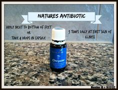 How To Use Oregano Essential Oil As A Natural Antibiotic