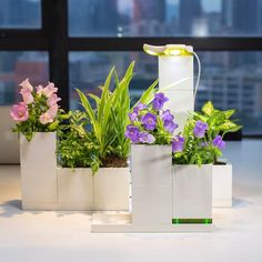Planter Boxes Shaped Like Cubes Let You Grow Your Own Indoor Garden