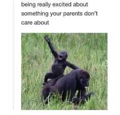 Being really excited about something your parents don't care about.