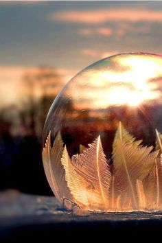 This Freezing Bubble Will Mesmerize You With Its Beauty - Glass Photography, Types Of Photography, Beautiful Girl Image, Beautiful Images, Freezing Bubbles, Artsy Photos, Water Droplets, Aesthetic Backgrounds, Whimsical Art