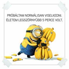 Minion loves bananas Cartoon HD desktop wallpaper, Banana wallpaper, Minion wallpaper, Despicable Me wallpaper - Cartoons no. Amor Minions, Cute Minions, Minions Quotes, Minions Despicable Me, My Minion, Minion Rush, Minions Cartoon, Banana Song, Minion Stickers