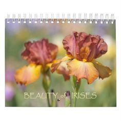 The Beauty of Irises Metal Print by Jenny Rainbow. All metal prints are professionally printed, packaged, and shipped within 3 - 4 business days and delivered ready-to-hang on your wall. Choose from multiple sizes and mounting options. Gifts For My Wife, Gifts For Family, Event Template, Iris Flowers, Buy Art Online, Irises, Any Images, Holidays And Events, Fine Art Photography