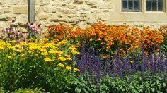 Oxford summer gardens