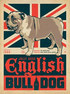 East Urban Home 'English Bulldog' Graphic Art on Wrapped Canvas Size: Small Puppies, Dogs And Puppies, Cool Dog Houses, British Bulldog, English Bulldog Art, Interactive Dog Toys, Happy Art, Girl And Dog, Style Vintage