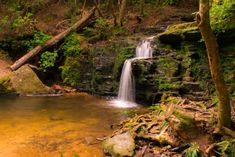There is also one county in Georgia that is home to 34 different falls, which seems like one heck of an adventure waiting to be had. Waterfalls In Georgia, Tallulah Gorge, Cascade Falls, Falls Creek, Places To See, To Go, Adventure, Travel, Outdoor