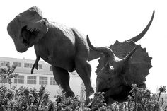 Dinosaur Statues at the Natural History Museum by Steve Tracy Photos, via Flickr