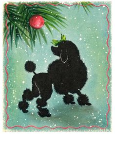 Vintage Christmas Card - Poodle Peace Parade goes on, rain, shine or snow.