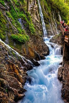 Berchtesgaden National Park, Bartler, Bavaria, Germany