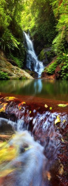 Elabana Falls, Queensland, Australia Travel and Photography from around the world. Landscape Photography, Nature Photography, Travel Photography, Photography Tips, Beautiful World, Beautiful Places, Beautiful Pictures, Beautiful Waterfalls, Beautiful Landscapes