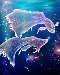 Know the Secrets to Woo All Zodiac Signs - Pisces