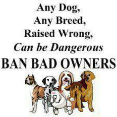 Bad owners, not breed..