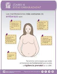 1e297035e  embarazada  tips  consejos  dieta  ejercicios  parto  meses Síntomas de  embarazo