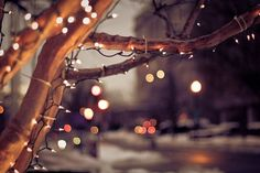 beautiful, bohek, christmas, lights,