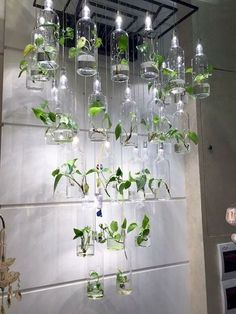 Herb Garden Indoor Design Ideas For Summer - Googo - Jardin Vertical Fachada Vertical Garden Design, Herb Garden Design, Garden Ideas, Indoor Garden, Indoor Plants, Herb Planters, Planter Ideas, Herb Pots, Planter Pots