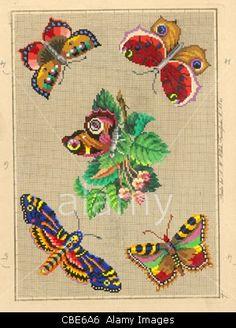 Берлин шерсть работа рисунок и бабочек