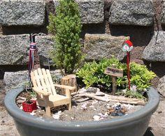 A full sun miniature garden with the Compressa Juniper and the Mother Lode Juniper