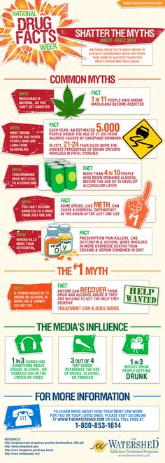 Drug Myths vs. Facts #drugs #addiction