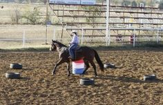 Barrel Racing: Control Your Horse's Speed with Michele McLeod (article in Horse & Rider) Barrel Racing Exercises, Barrel Racing Tips, Horse Exercises, Barrel Racing Horses, Barrel Horse, Horse Riding Tips, Horse Tips, Trail Riding, Barrel Train