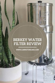 It's important to know what you're putting in your body - even your water could have an affect on your body. That's why I use the Berkey filter, so that I know my family and I are drinking clean water daily. Carrots N Cake, Cake Blog, Healthy Lifestyle Tips, Water Filter, Health Coach, Health Tips, Filters, Drinking, Bubbles