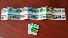 """Jeu de 7 familles """"classification des animaux"""" Montessori, Busy Bags, Games, Moment, Nature, Language, Animals, Autism, Science"""