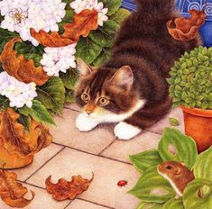 cats anne mortimer images   Картины Anne Mortimer :: Кошачий портал. Фото ...