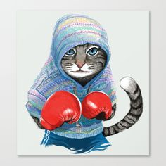 Boxing cat      widdles