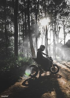 Motorcycle, Bicycle, Forest, Tree Wallpaper for Android [Full HD], Motorcycles Background and Image