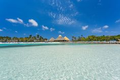 5 Playas en Aruba para disfrutar con tus amigos