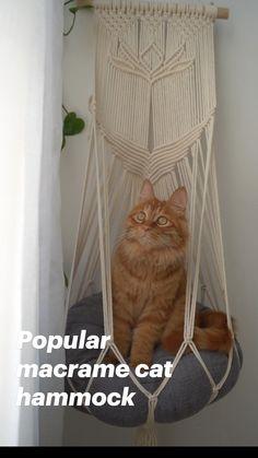 Diy Cat Hammock, Micro Macramé, Cat Room, Macrame Design, Macrame Projects, Cat Supplies, Macrame Patterns, Cat Furniture, Crafty