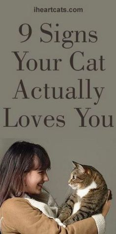 "The 9 ways your cat says ""I Love You""!"