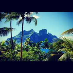 Honeymoon in Bora Bora. Bora Bora Honeymoon, Holidays, Mountains, Nature, Travel, Holidays Events, Naturaleza, Viajes, Holiday