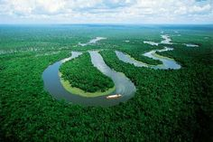 Pass through the Amazon Rainforest in my house boat.