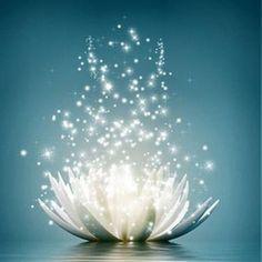Fleur de Lotus et étoiles! Je suis un être divin et parfait! http://gagnersaviedivinement.com