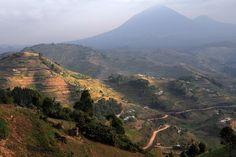 virunga volcano region - , Kisoro - Uganda