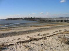 Duxbury beach at low tide.
